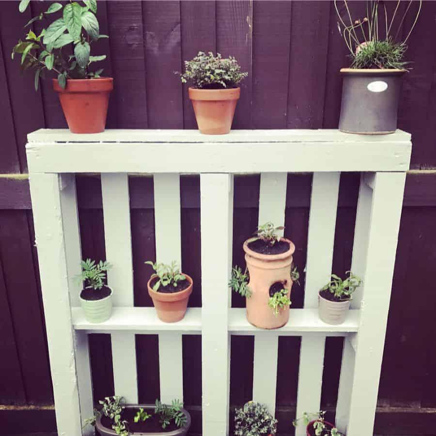 shelf and pot hanger pallet garden ideas vegpatchnewbie