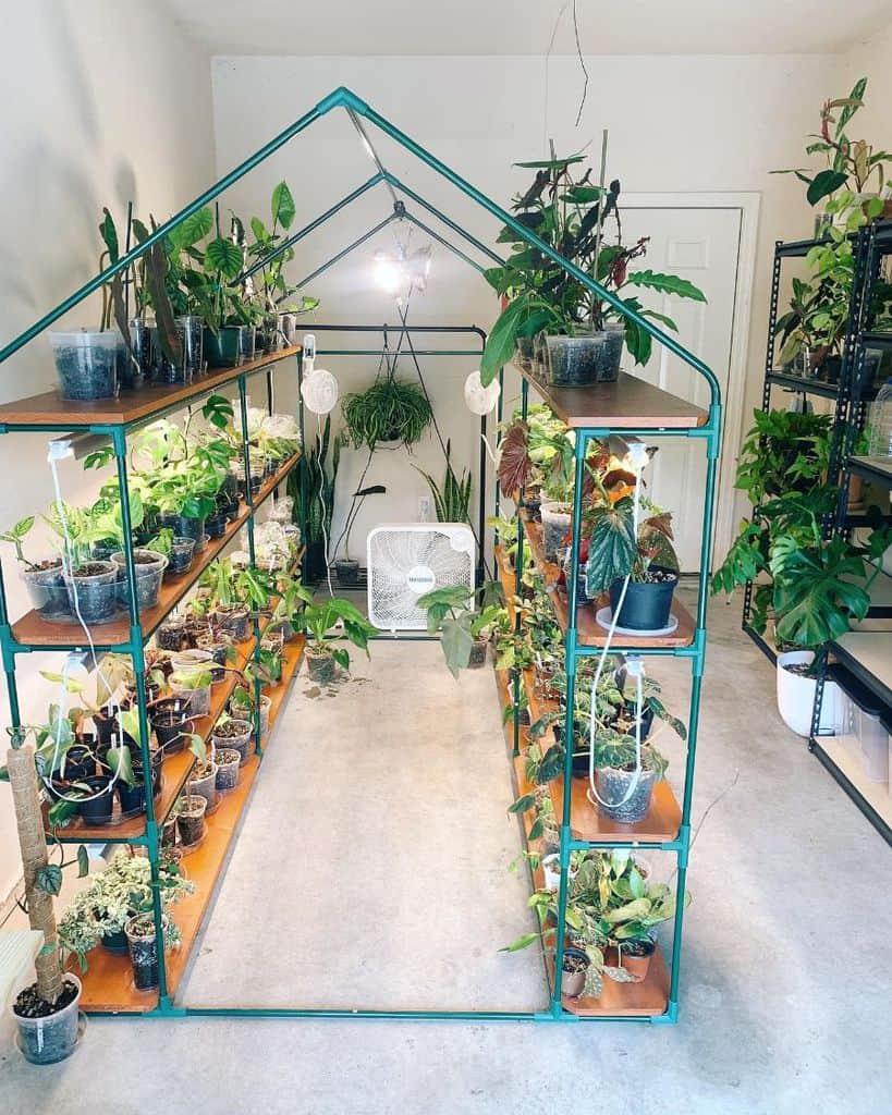 shelves greenhouse ideas plantsandsass