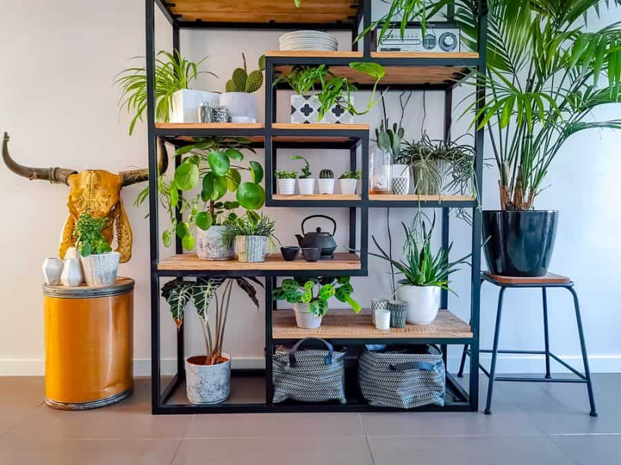 shelving and stand for vertical garden ideas 4