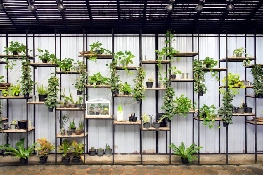 shelving and stand for vertical garden ideas 5