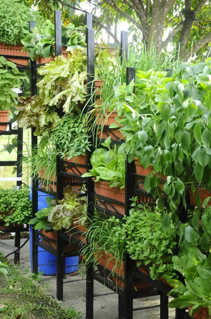 shelving and stand for vertical garden ideas 6
