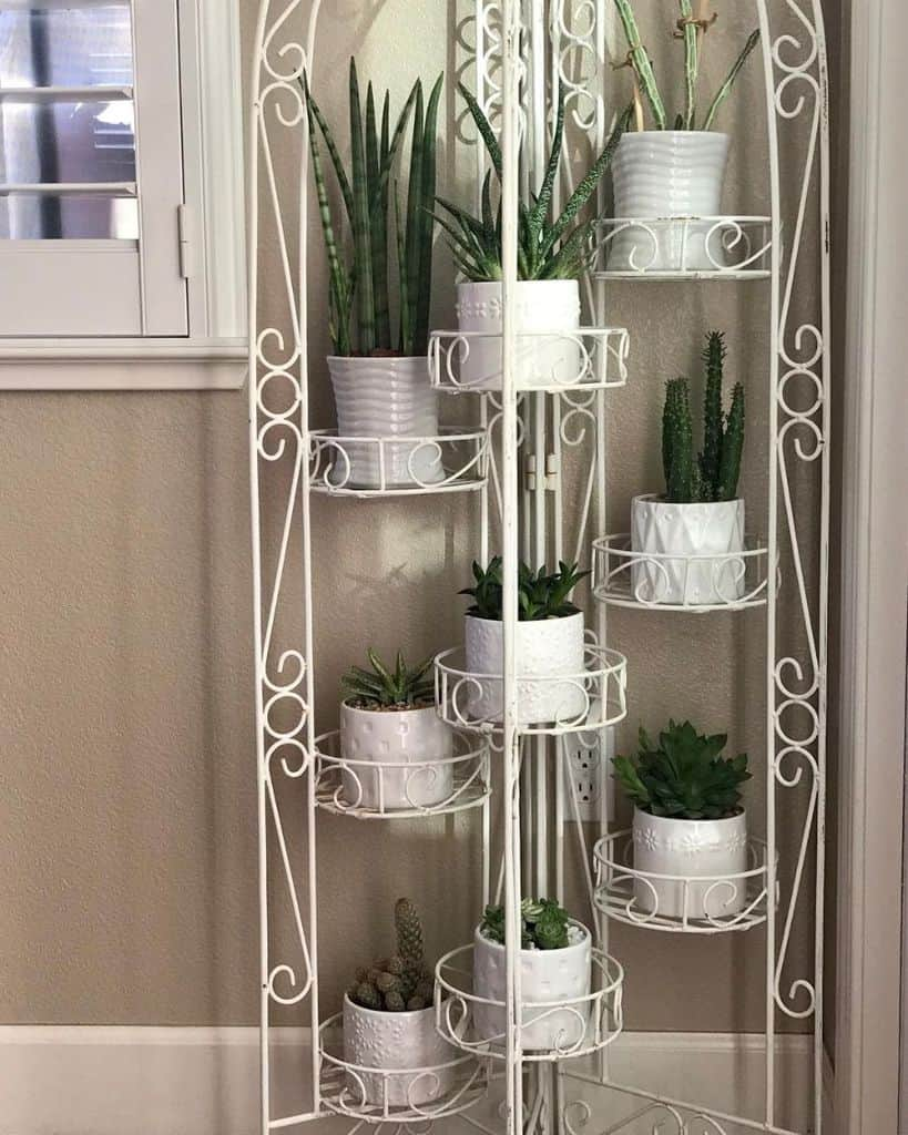 shelving and stand for vertical garden ideas mysucculentaddictionisreal