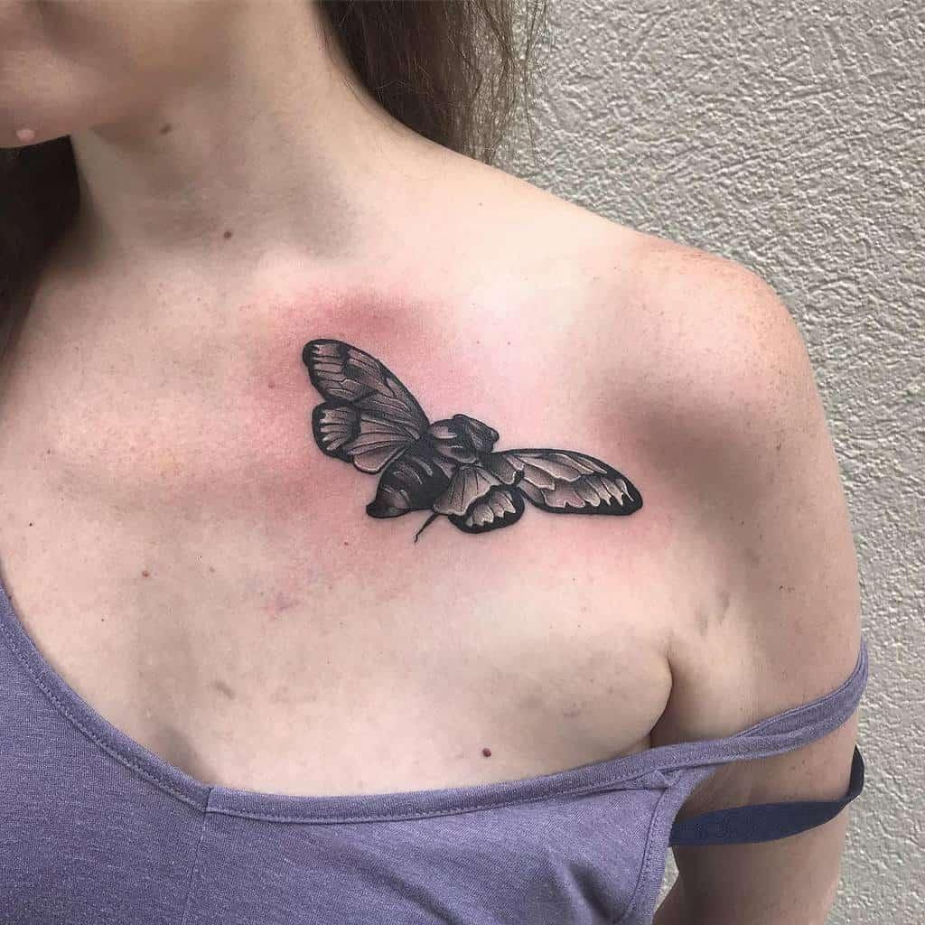 shoulder Cicada Tattoos shannondeel