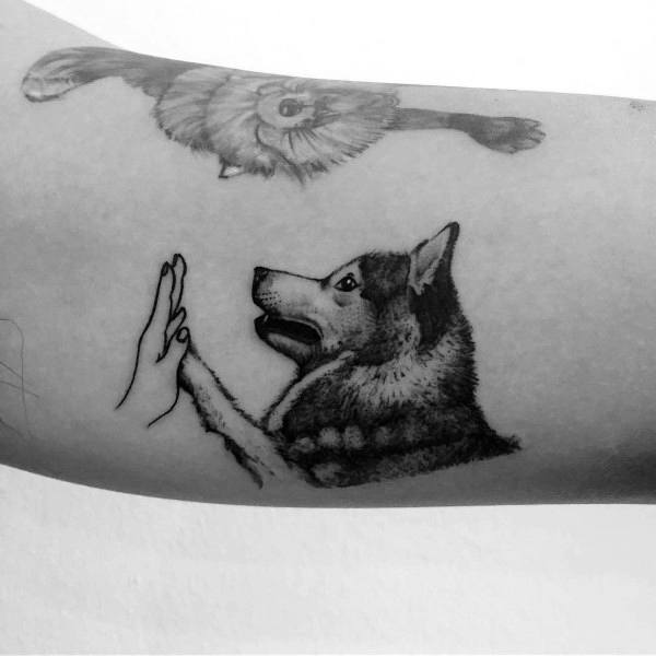Siberian Husky Tattoo Designs On Men