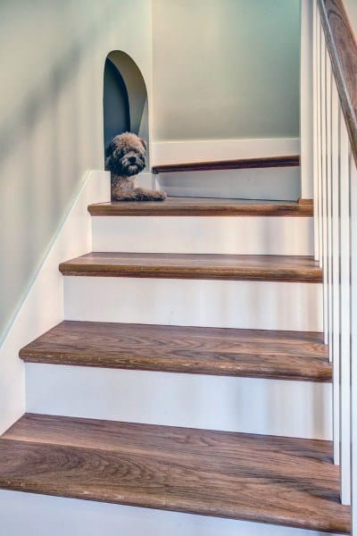 Side Of Stairs Dog Room Ideas