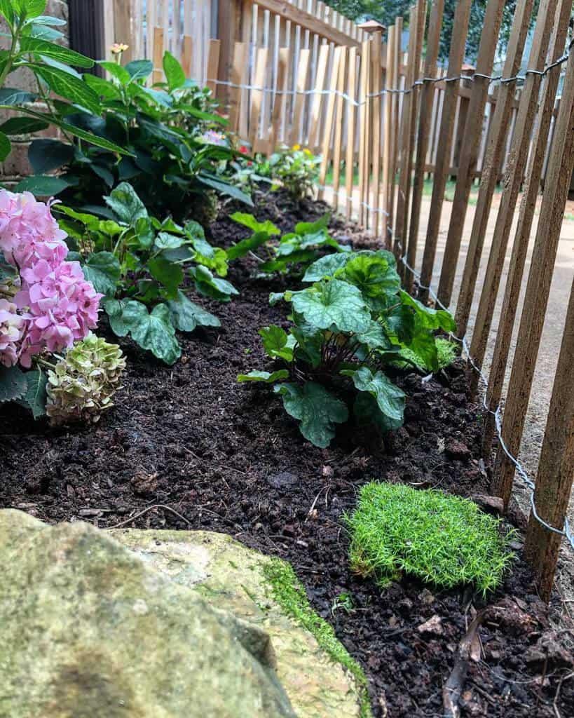 sideyard shade garden ideas brittaw123