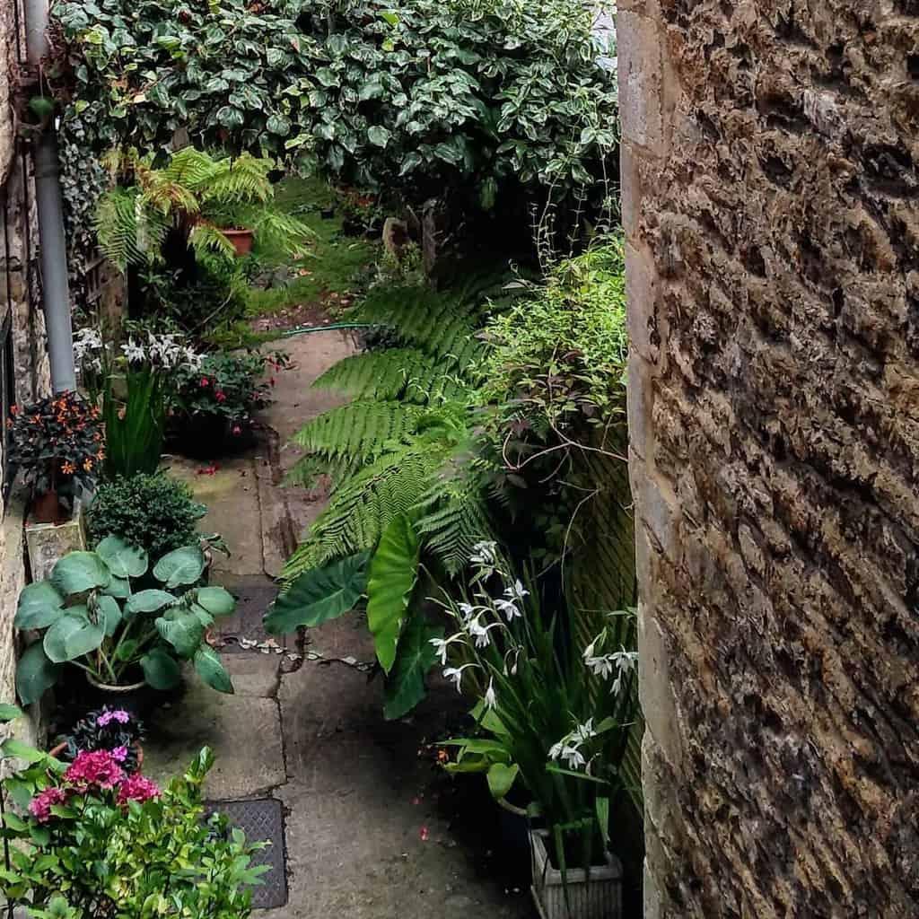 sideyard shade garden ideas prioryhome