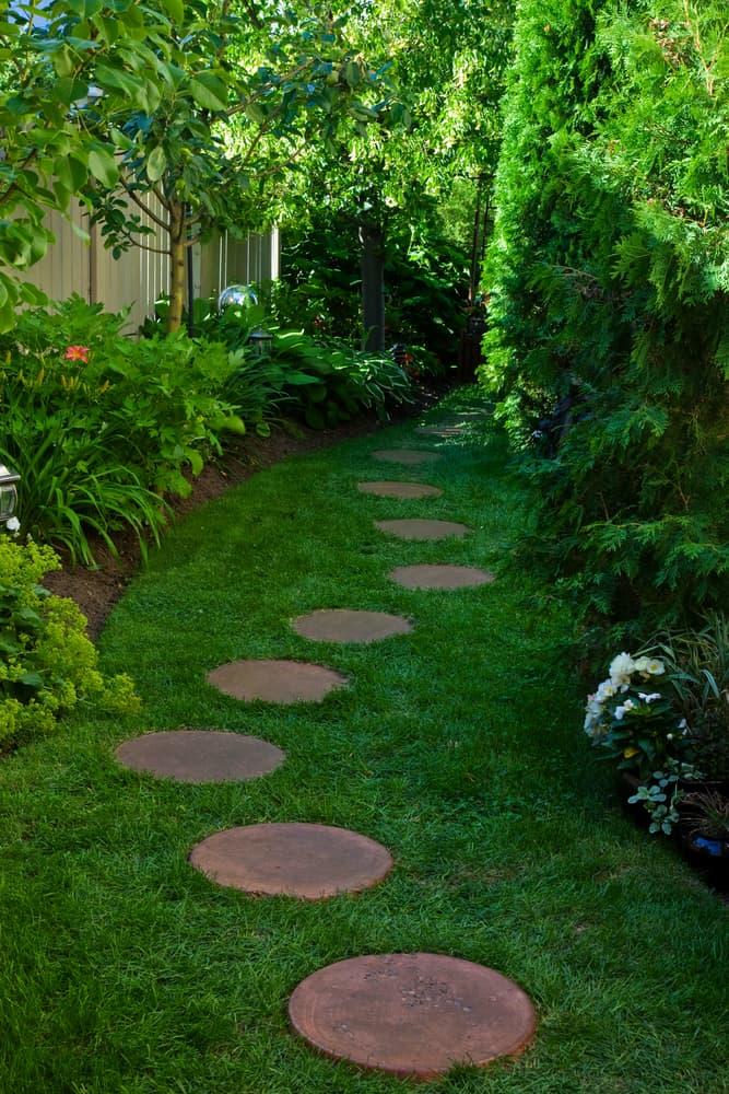 sideyard shade garden ideas