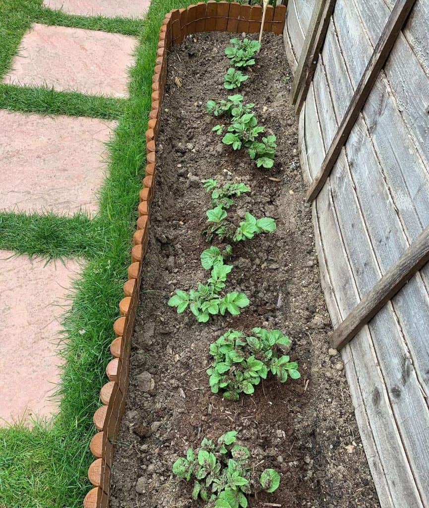 sideyard vegetable garden ideas small_garden_big_ideas