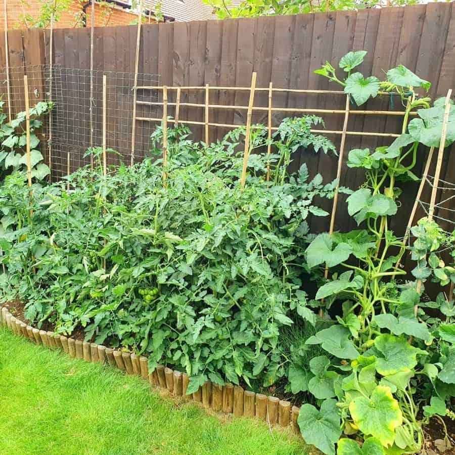 sideyard vegetable garden ideas v1ck1.72