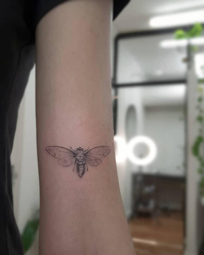 simple Cicada Tattoos alexandyrvalentine