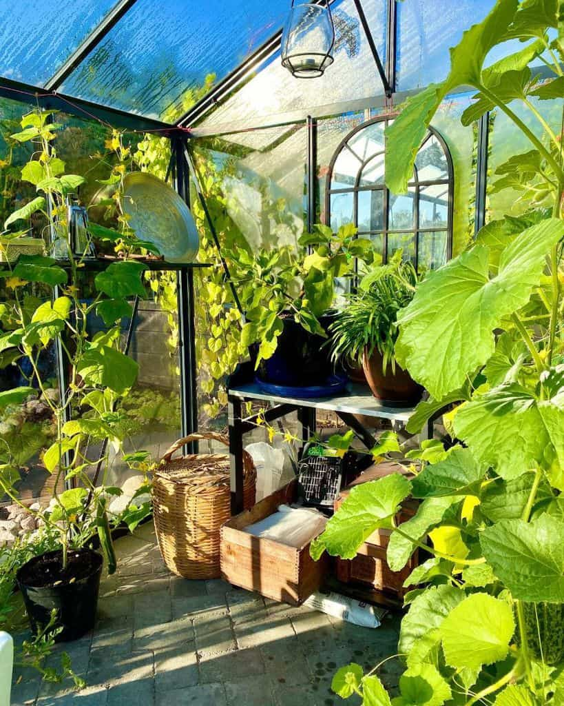 simple greenhouse ideas mojnse