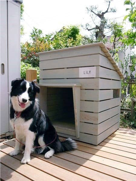 Simple Wood Slat Cool Dog Houses