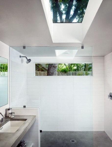 Skylight Designs For Shower Window