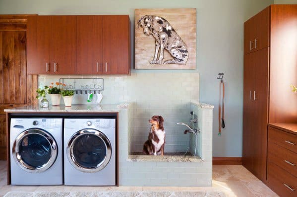 Sleek Home Dog Wash Station Ideas