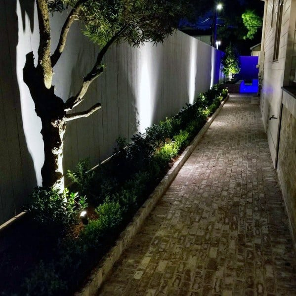 Sleek Landscape Lighting Ideas