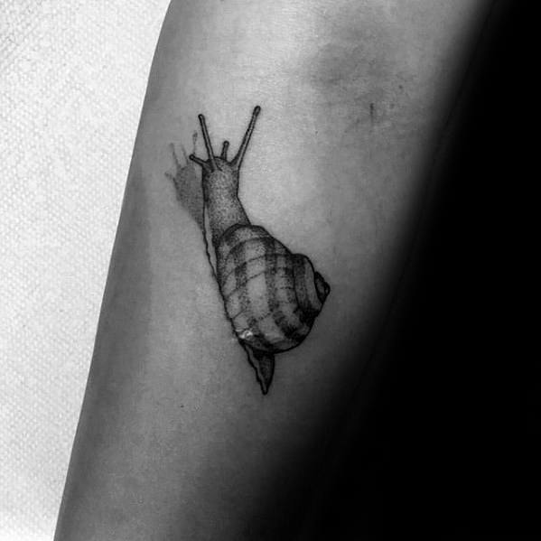665e3191e 60 Snail Tattoo Designs For Men - Cool Slithering Ink Ideas