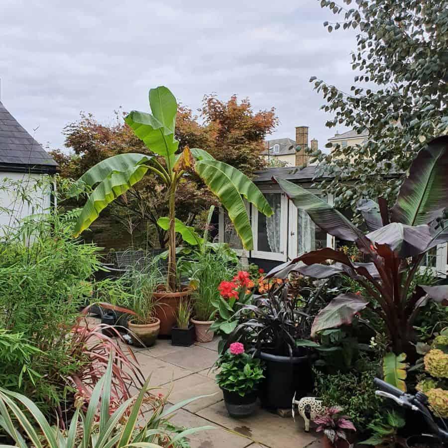 small backyard container garden ideas looksatfoxes