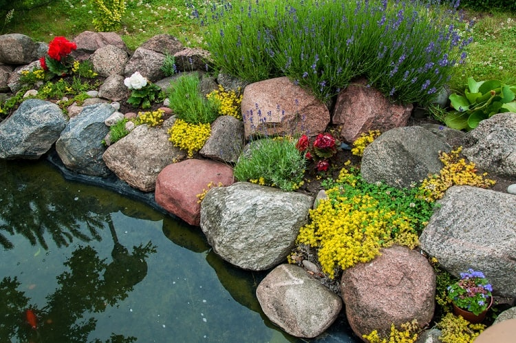 Small Backyard Pond Landscaping
