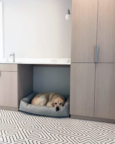 Small Built In Cabinet Dog Room Ideas