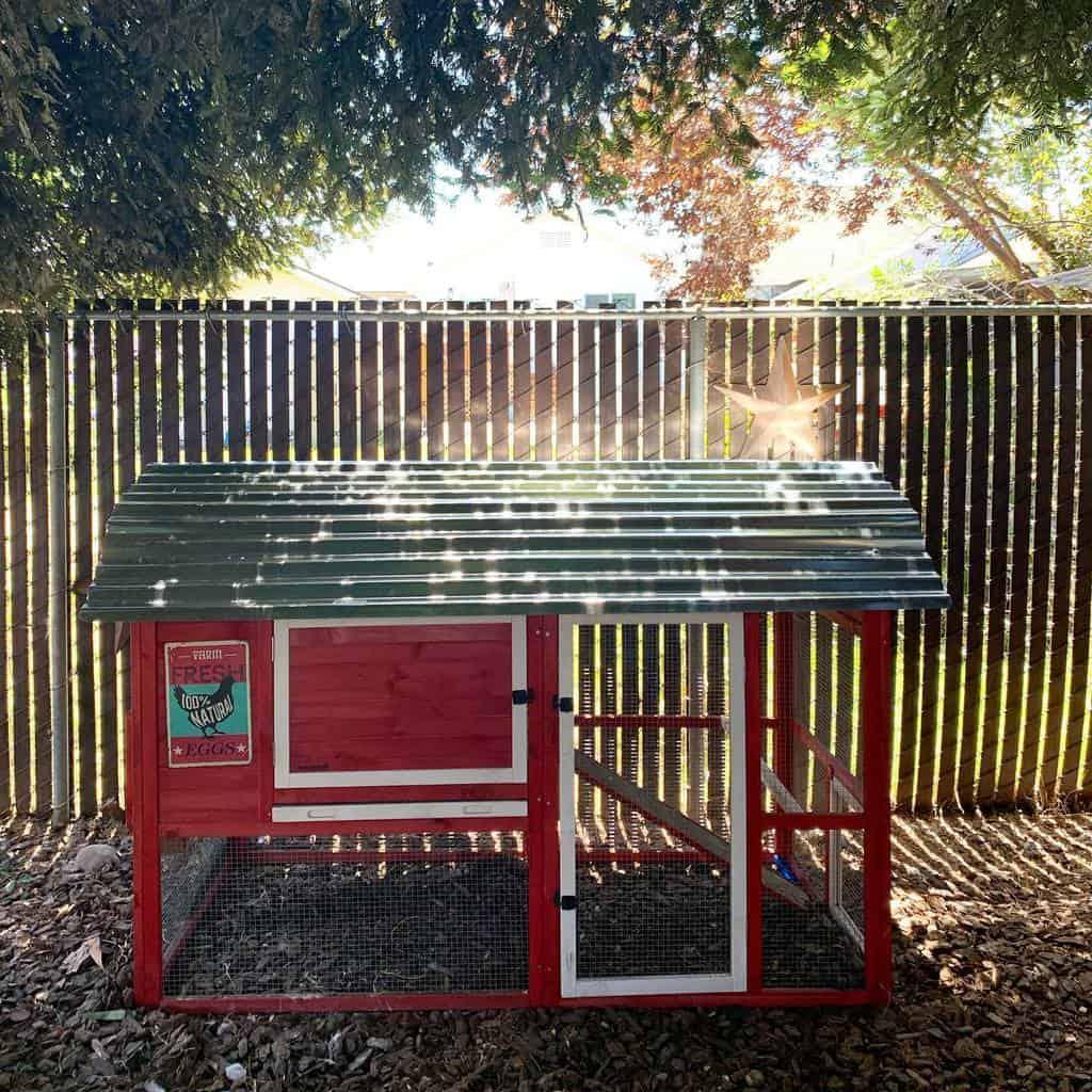 small chicken coop ideas hellahenshomestead