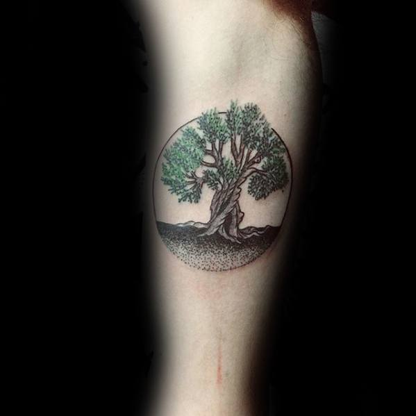Small Circle Inner Arm Bicep Olive Tree Guys Tattoo Ideas