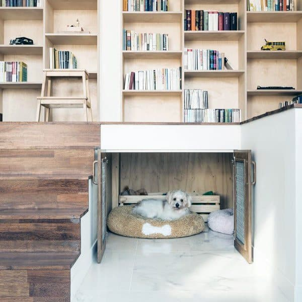 Small Dog Room Ideas