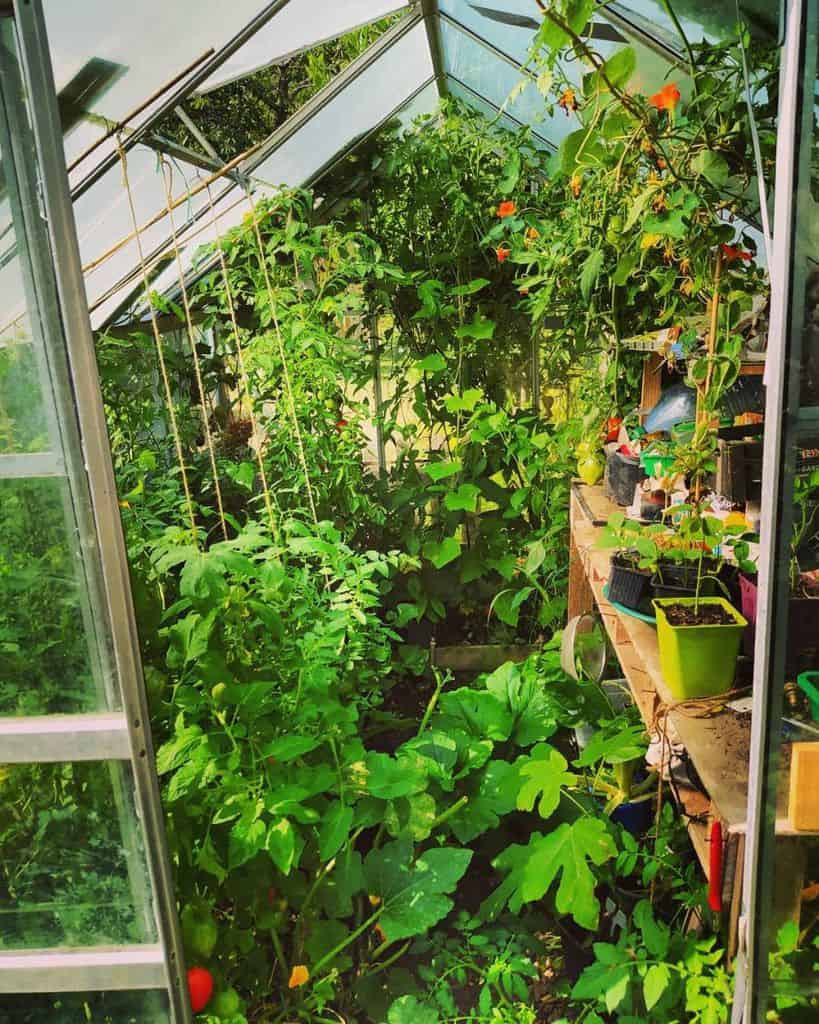 small greenhouse ideas lepotagerpiments