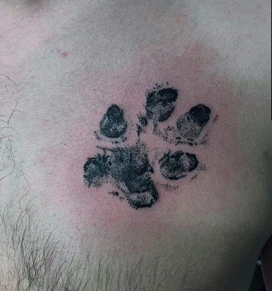 Small Mens Realistic Dog Paw Print Tattoo On Upper Chest