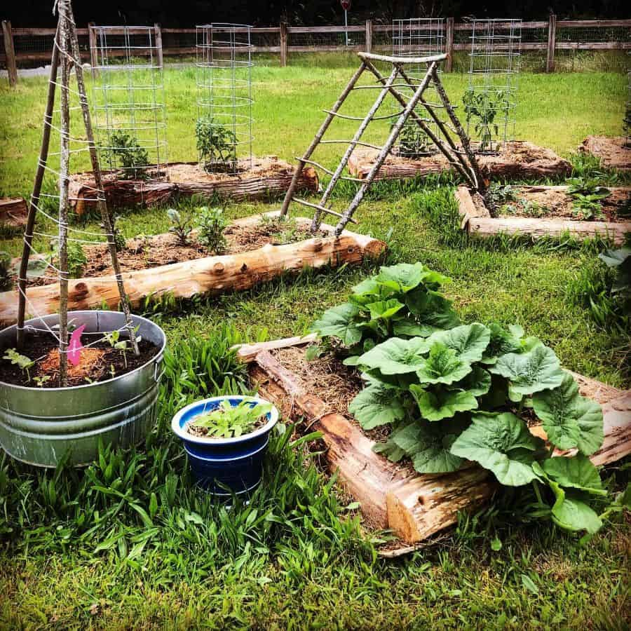 small raised bed raised garden bed ideas rootedrevivalhomestead
