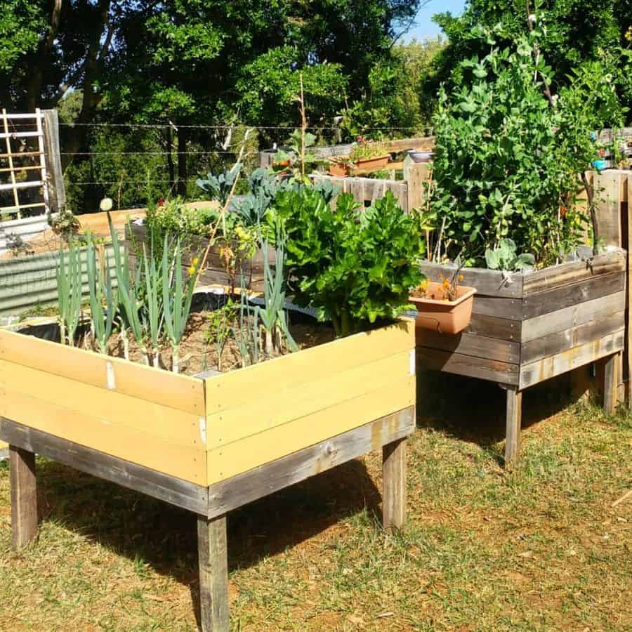 small raised bed raised garden bed ideas the_pallet_upcycler
