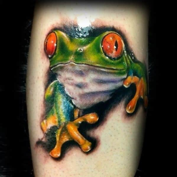 Small Realistic Forearm Tree Frog Tattoos For Gentlemen