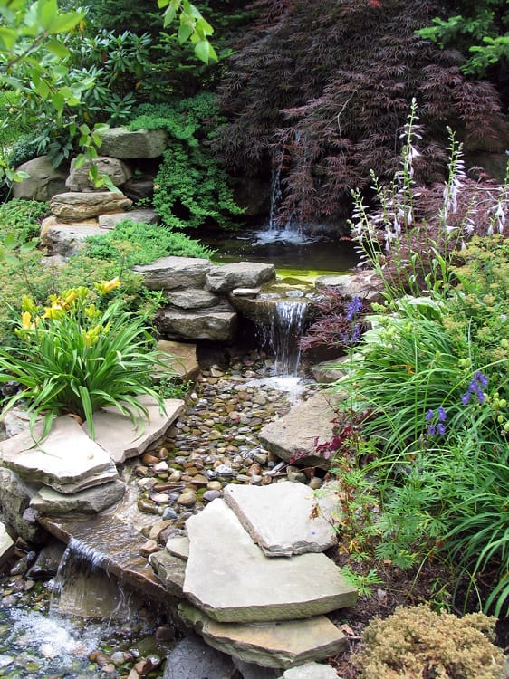 Small stepped waterfall in a landscaped oriental garden
