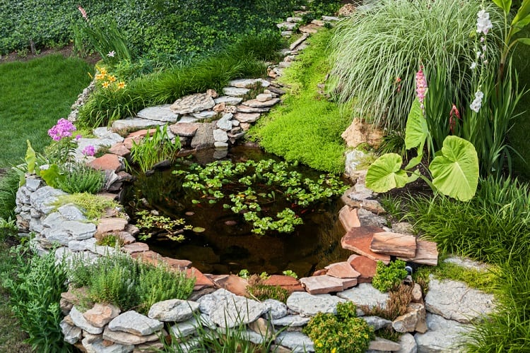 Small Surrounded With Stone Backyard Pond Landscaping