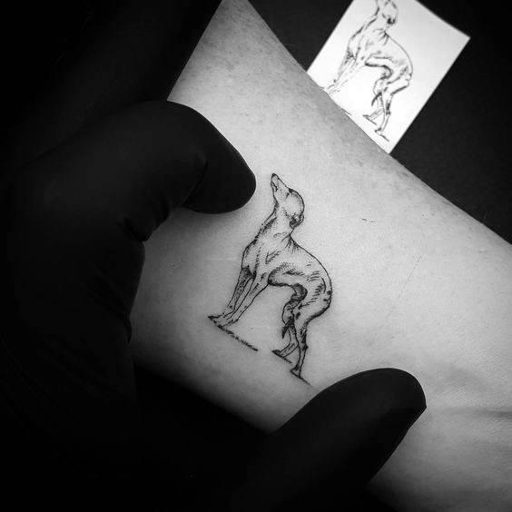 Small Tiny Guys Greyhound Tattoo Design Ideas
