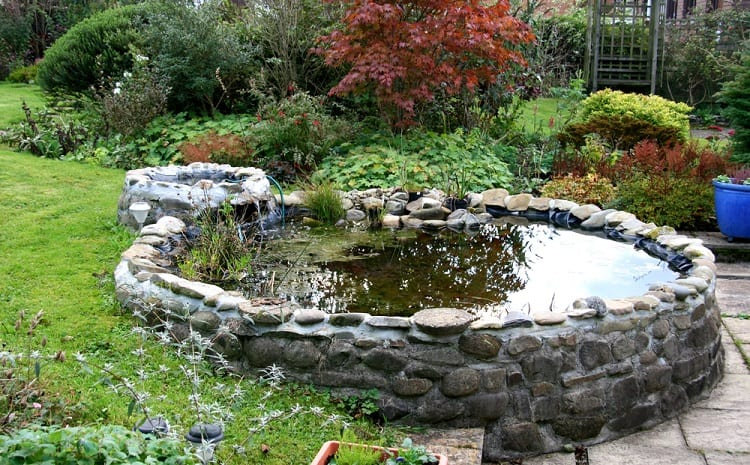 Small Trickle Waterfall Backyard Container Pond