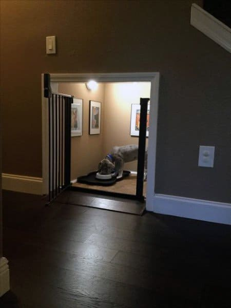 Top 60 Best Dog Room Ideas Canine Space Designs