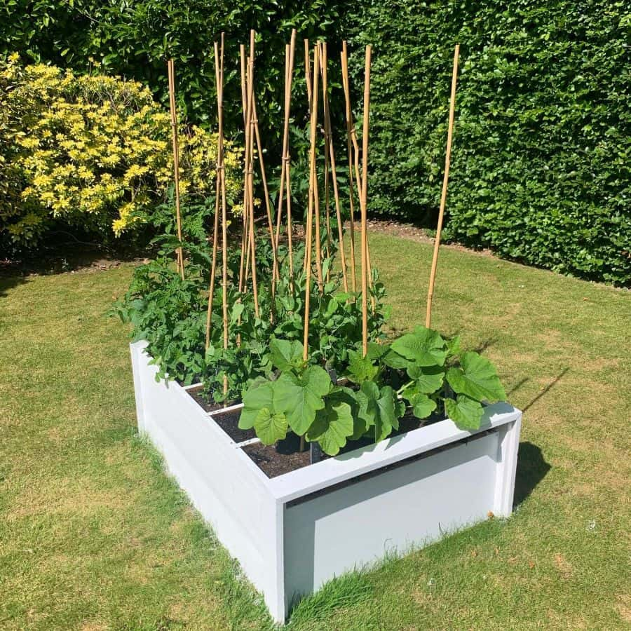 small veggie patch vegetable garden ideas @loafofsoph2020