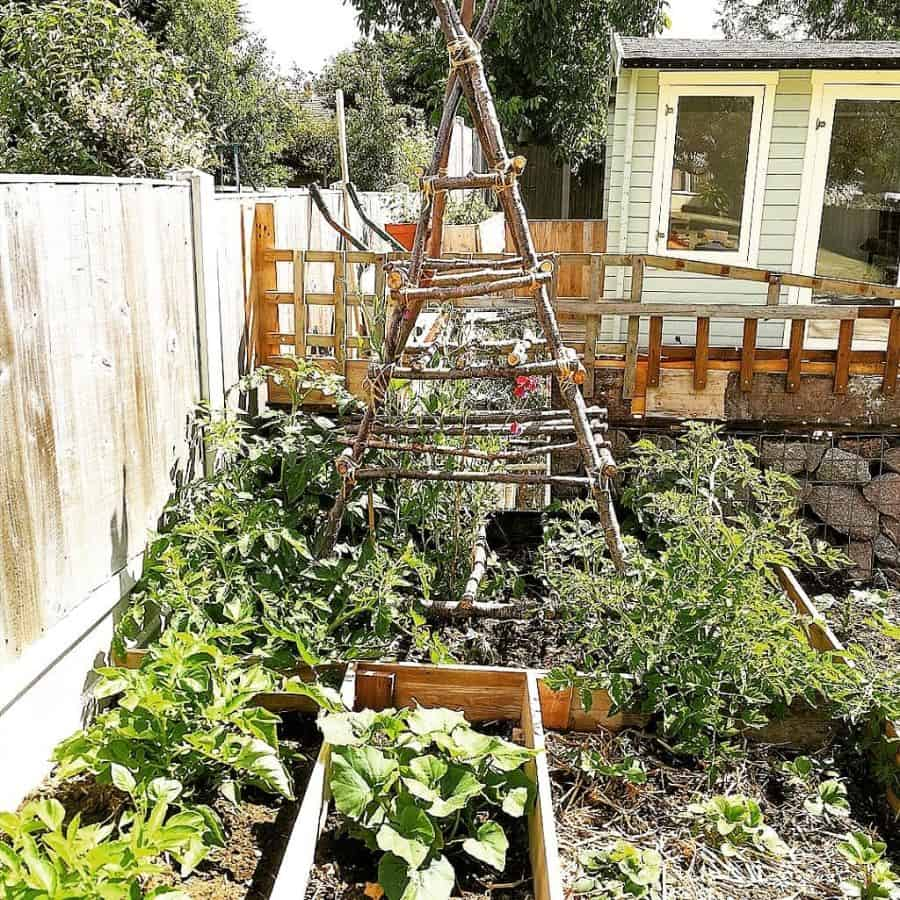 small veggie patch vegetable garden ideas nineteen_fieldview_cottage