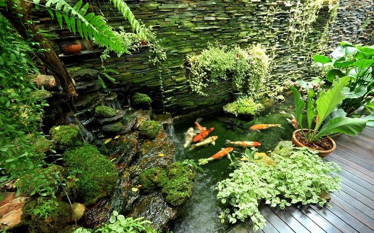 Small Waterfall Backyard Koi Pond
