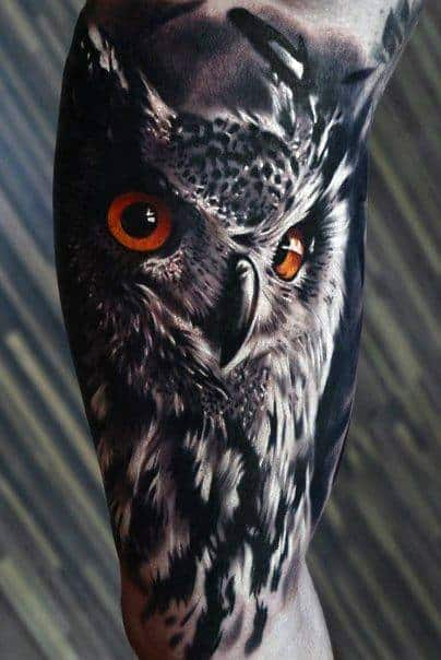 Solemn Owl Realistic Tattoos Male Forearms