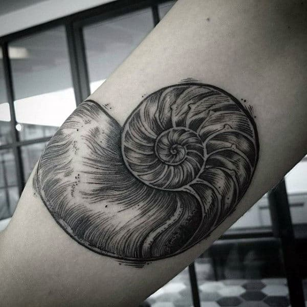 Spiral Seashell Bicep Tattoos For Males