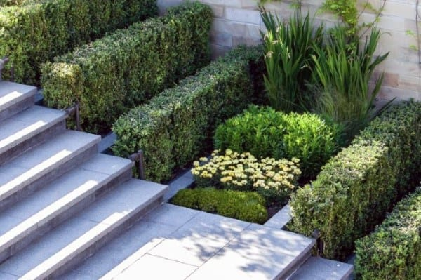 Great Stairs Path Modern Landscape Design