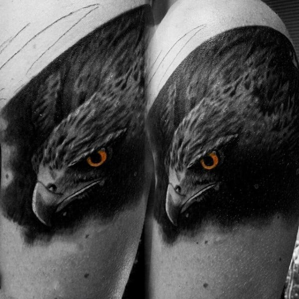 Stalking Hawk Black Tattoo On Males Bicep