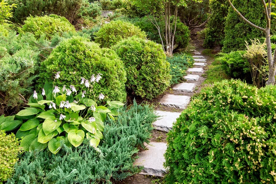 Garden Walkway Ideas With Natural Stone