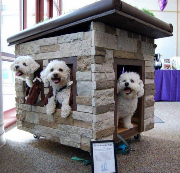 Stone Exterior Cladding Dog House Ideas