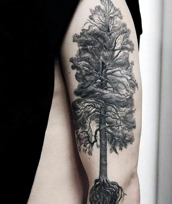 Tall Tree With Roots Mens Arm Tattoos
