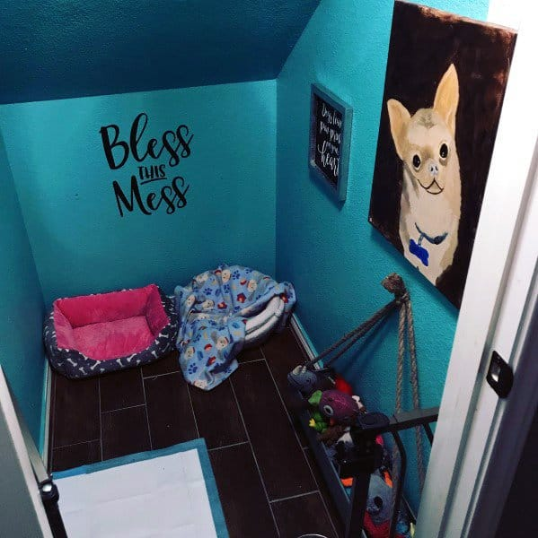 Teal Dog Room Ideas