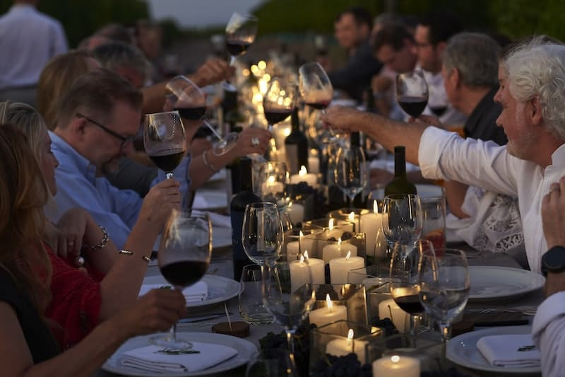 The Vines Could Be the Luxury Wine Experience You Are Looking For