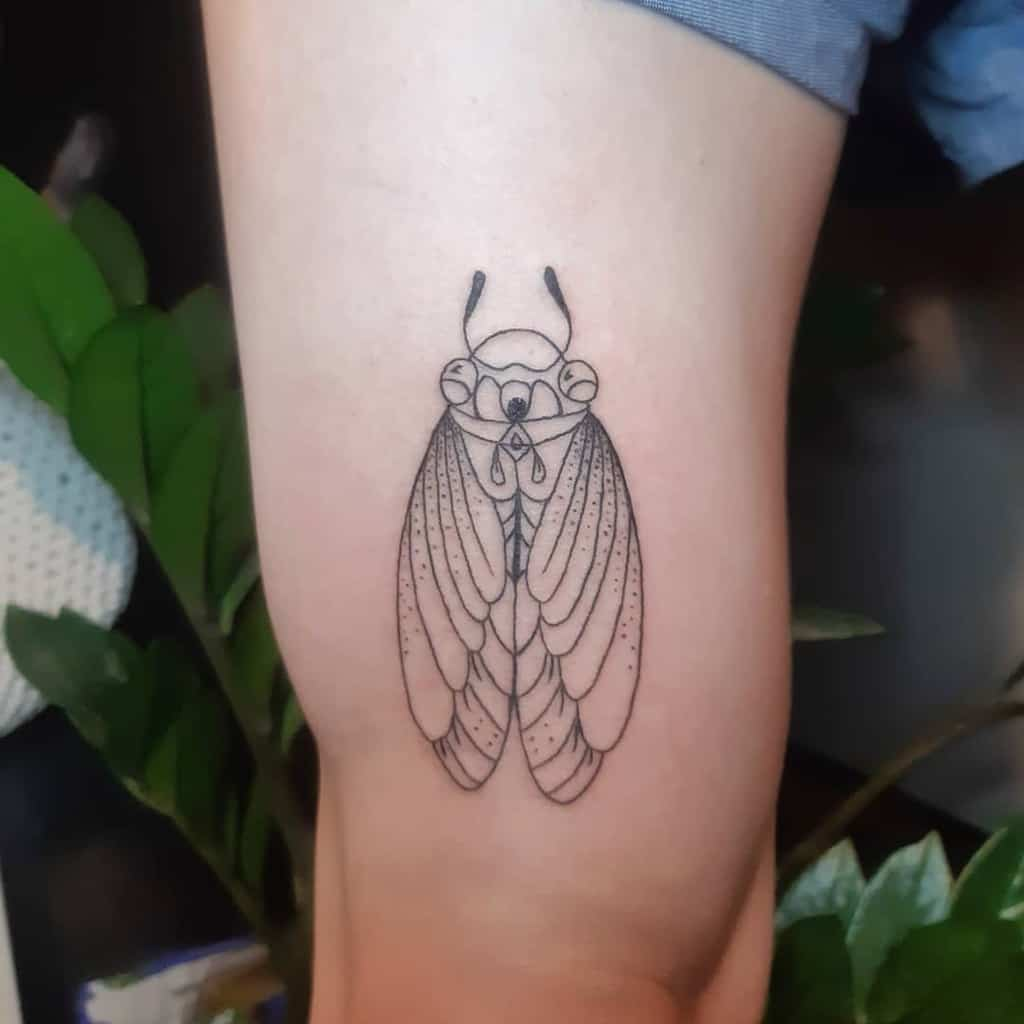 thigh Cicada Tattoos punkt_und_stich_